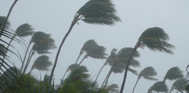 huragan tropikalny