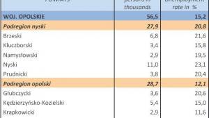 Bezrobocie w Polsce w styczniu 2013 r. woj. OPOLSKIE