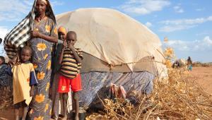 Uchodźcy z Somalii w obozie w Dadaab w Kenii