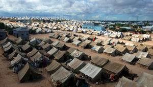 imigranci obóz