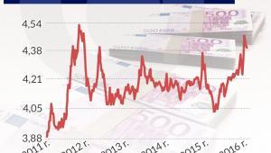 Kurs złotego wobec euro (infografika Dariusz Gąszczyk)