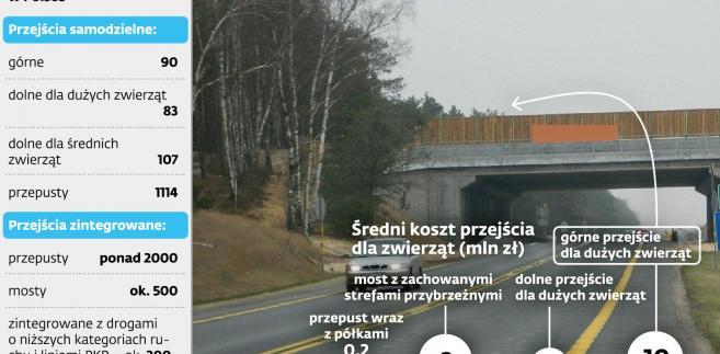 Liczba przejść dla zwięrząt nad drogami krajowymi w Polsce