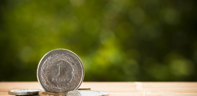 złotówka, pieniądze, moneta, oszczędności