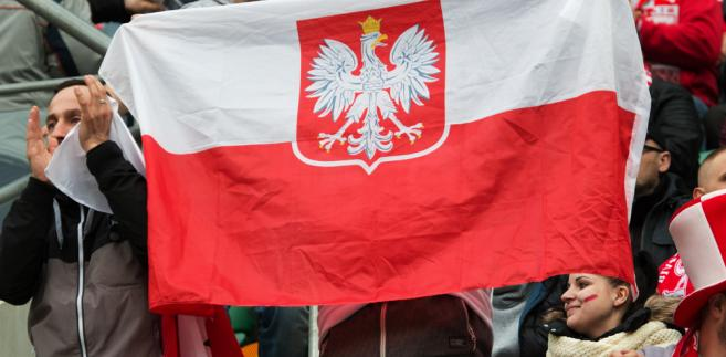 Polacy, kibice