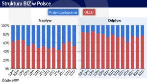 Struktura BIZ w Polsce (graf. Obserwator Finansowy)