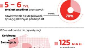 Jak wygląda sytuacja wspólnot gruntowych w Polsce